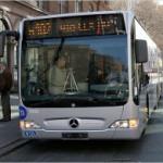 Автобусы Нью-Йорка